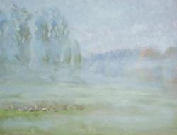 Foggy geese