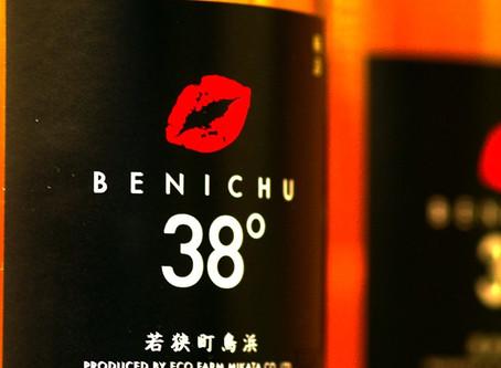 若狭の特産梅を使った まったく甘くない 梅酒 BENICHU 販売中!