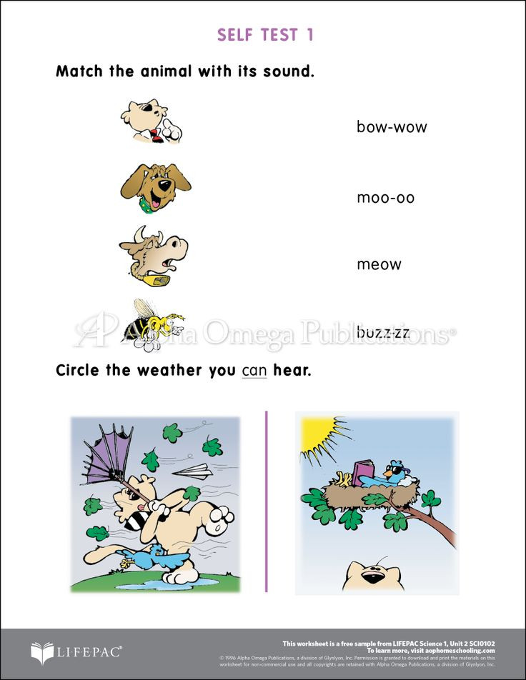 worksheet 2.jpg