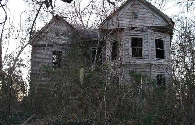 Johnson's Farm