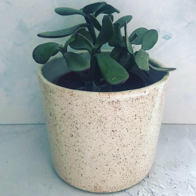 Medium Cream Speckle Pot £18