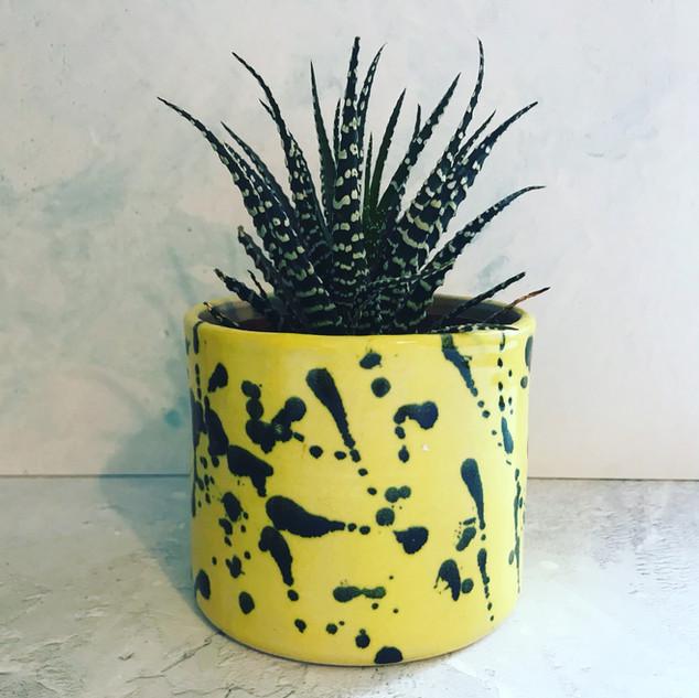 Medium Yellow Splatter Pot