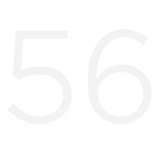 the number 56