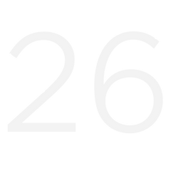 the number 26