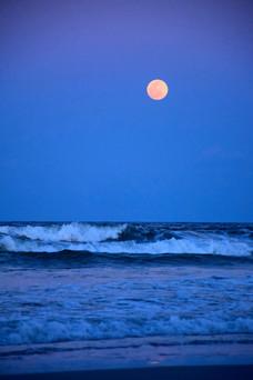 Harvest Ocean Moon 12138.jpg