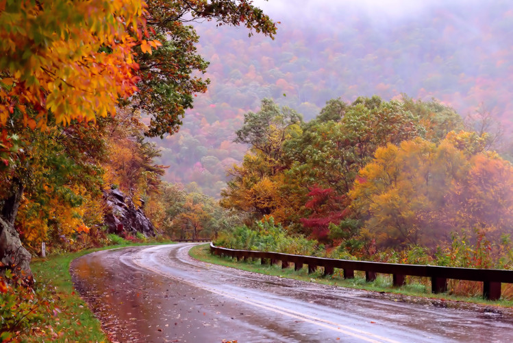 Along the Mountain Path 03146.JPG