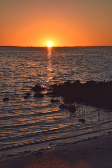 Tampa Cypress Park Sunset 25456.jpg