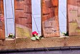 Hemlock Gate with Roses 02544.JPG