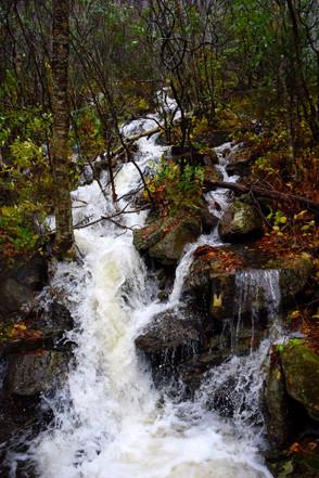 Mountain Rainwater Runoff 00822.JPG