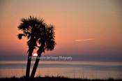 Twin Palm Sunrise BGI 00840.jpg