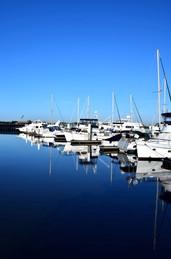 Vertical Marina Reflections 13771.jpg