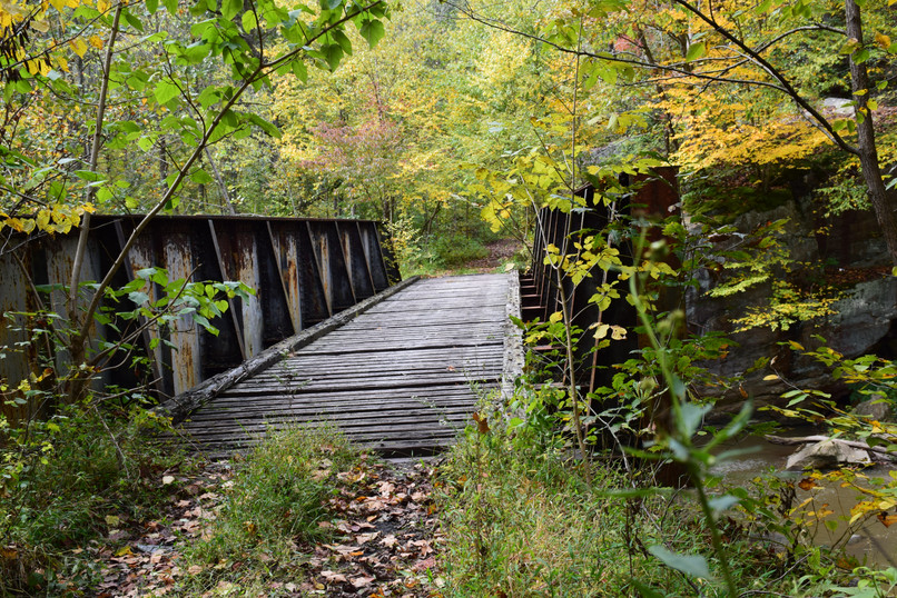 Trestle in the Forest 01438.JPG