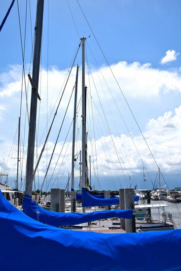 Row of Covered Sailboats 15417.jpg