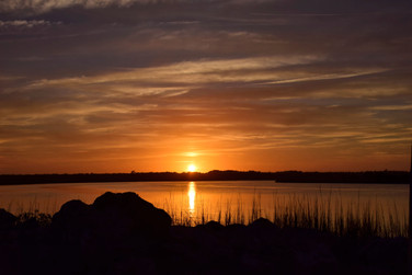 Sunset Over Reeds and Rocks 24061.jpg