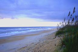 Colorful Dunes with Sea Oats 00920c BGI.
