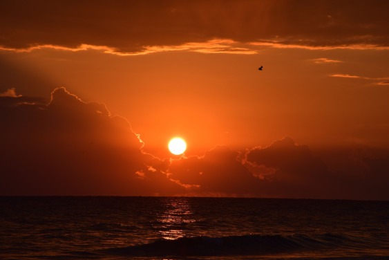 Gulf of Mexico Sunset 00784.jpg