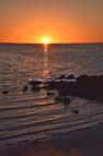 Tampa Cypress Park Sunset 25456 BGI.jpg