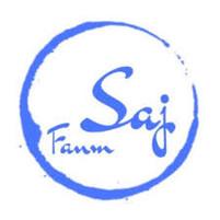 Fanm Saj, Inc..jpg