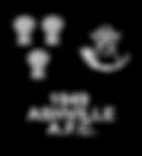 Ashville Badge Black-min.png