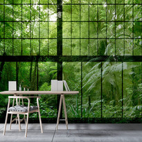 DD113742-rainforest-02.jpg