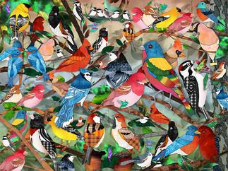 Bird Medley - light background