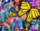 Butterflies BFy-8SB