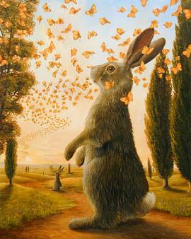 Path (Rabbit Collection)