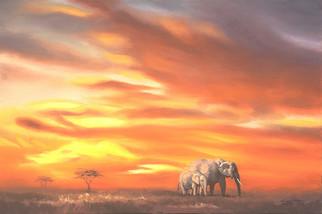 E-146-elephants.jpg