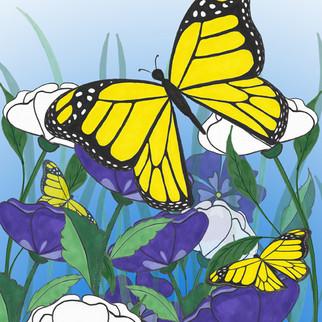 Monarch Butterfly-8