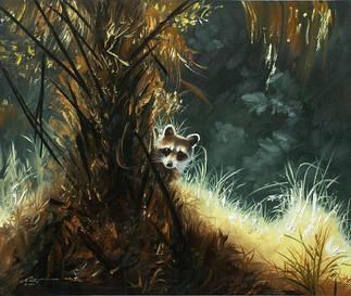 R-18-raccoon.jpg