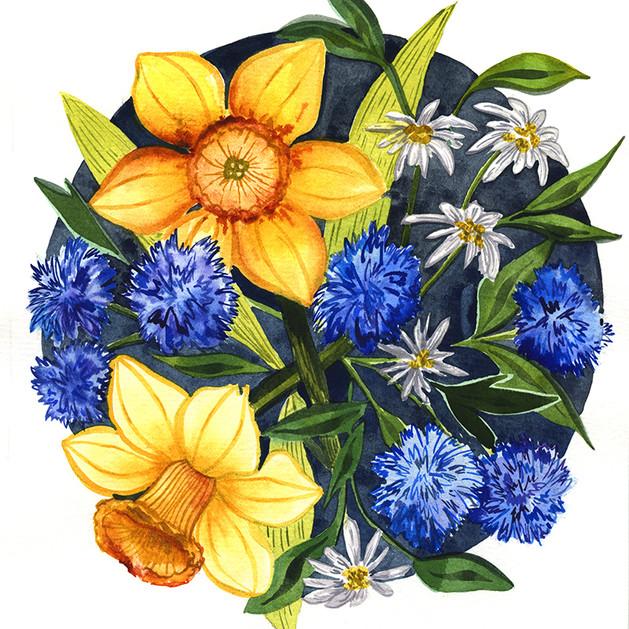 Daffodil Yellow and Blue on Da