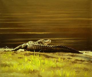A-68-alligator.jpg