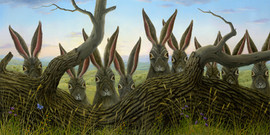 Lookouts (Rabbit Collections)