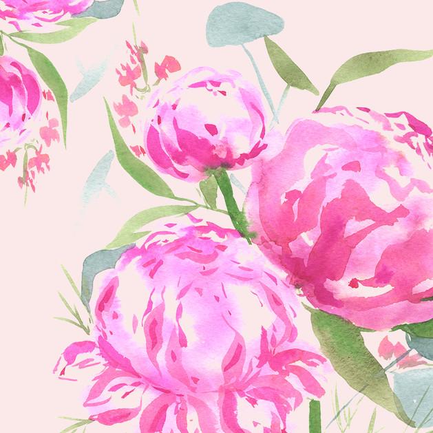 PInk Peonies Florals
