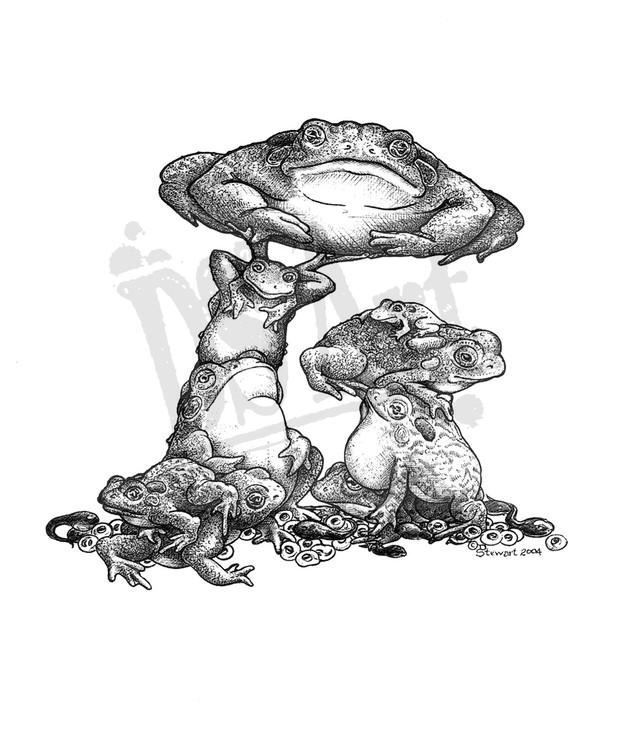 ToadstoolWM.jpg