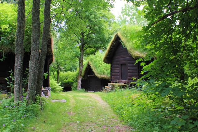 Hobbit Hill-2.jpg
