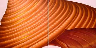 Sienna Spiral - Seashell