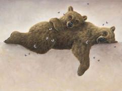 Affinitas (Bear Collection)
