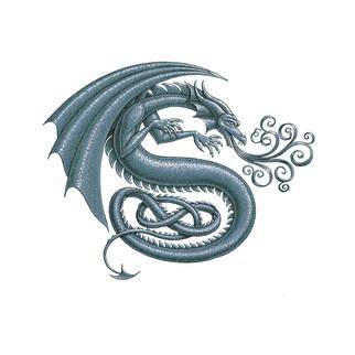 draco_S2_alone_silver copy.jpg