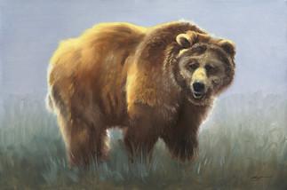 B-95-Bwn Bear.jpg