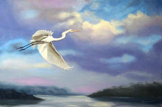 E-157-gw Egret.jpg