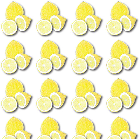 lemon-6.jpg