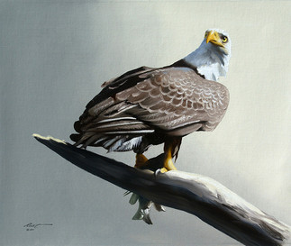 E-121-eagle.jpg