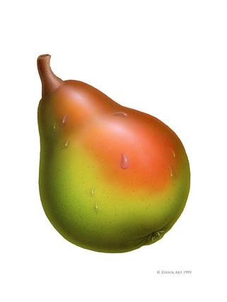 fruit-pear.jpg