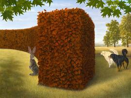 The Runaround (Rabbit Collections)