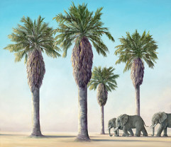 Slumbering Giants (Other Animals - Eleph