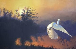 E-196-GW Egret.jpg