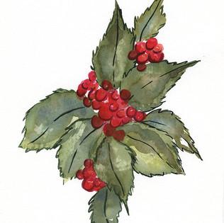 Holly berries.jpg