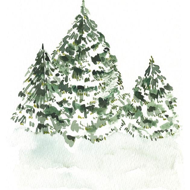 Snowy Trees (Vertical).jpg