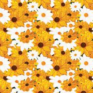 Daisies-3.jpg